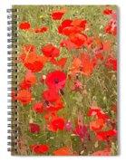 Poppies Vii Spiral Notebook