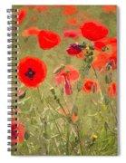Poppies X Spiral Notebook