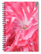Popping Pink Spiral Notebook
