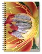 Poppy 4 Spiral Notebook