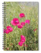 Poppy Blush Spiral Notebook