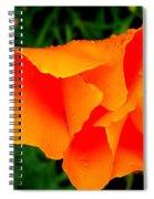 Poppy Dew Spiral Notebook