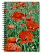 Poppy Field 2 Spiral Notebook
