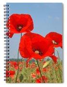 Poppy Fields 4 Spiral Notebook