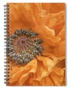 Poppy Spiral Notebook