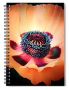 Poppy In The Darkness Spiral Notebook