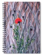 Poppy In The Wild Spiral Notebook