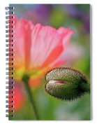Poppy In Waiting Spiral Notebook