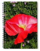 Poppy On Thyme  Spiral Notebook