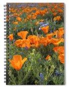 Poppy Perfection Spiral Notebook