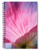 Poppy Rays Collage Spiral Notebook