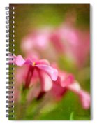 Popsicle Pink Spiral Notebook