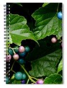 Porcelain Berries Spiral Notebook