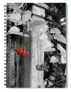 Porch Post Berries Color Punch Spiral Notebook