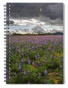 Porter Ranch Wildflowers   Spiral Notebook
