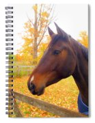 Portrait Of A Beauty Spiral Notebook