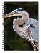 Portrait Of A Blue Heron Spiral Notebook