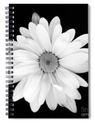 Portrait Of A Daisy Spiral Notebook