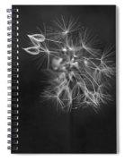 Portrait Of A Dandelion Spiral Notebook