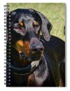 Portrait Of A Doberman Spiral Notebook
