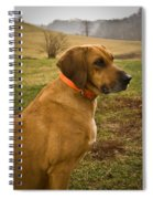 Portrait Of A Dog Spiral Notebook
