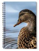 Portrait Of A Duck Spiral Notebook