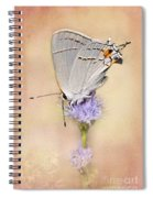 Portrait Of A Gray Hairstreak Spiral Notebook