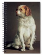 Portrait Of A King Charles Spaniel Spiral Notebook