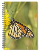 Portrait Of A Monarch Spiral Notebook