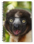 portrait of a sifaka from Madagascar Spiral Notebook