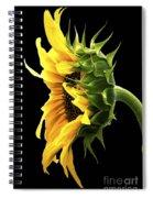Portrait Of A Sunflower Spiral Notebook