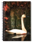 Portrait Of A Swan Spiral Notebook