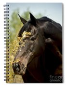 Portrait Of A Thoroughbred Spiral Notebook