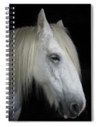 Portrait Of A White Horse Spiral Notebook