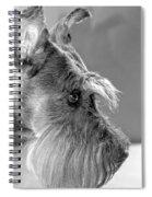 Portrait Of Gretl Spiral Notebook