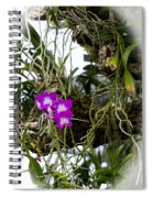 Portrait Of Orchids Spiral Notebook