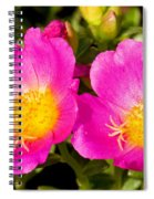Portulaca Flower Spiral Notebook