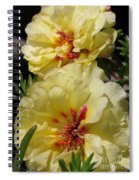 Portulaca Named Happy Hour Banana Spiral Notebook