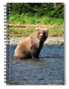 Posed Perfection Spiral Notebook