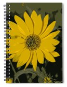 Posterized Smooth Oxeye Spiral Notebook