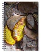 Pot-pourri Spiral Notebook
