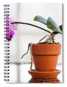 Potted Pink Orchid Spiral Notebook