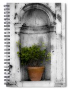 Potted Plant At Villa D'este Near Rome Italy Spiral Notebook