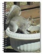 Potted Squirrel Spiral Notebook