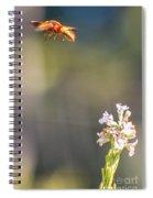 Potter Wasp In Flight Spiral Notebook