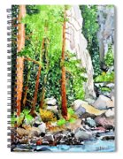 Poudre Canyon Beauty Spiral Notebook