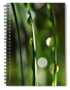 Pour Spiral Notebook