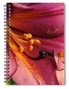 Powdered Pollen  Spiral Notebook