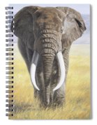 Power Of Nature Spiral Notebook