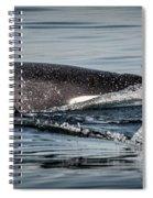 Power Pod II Spiral Notebook